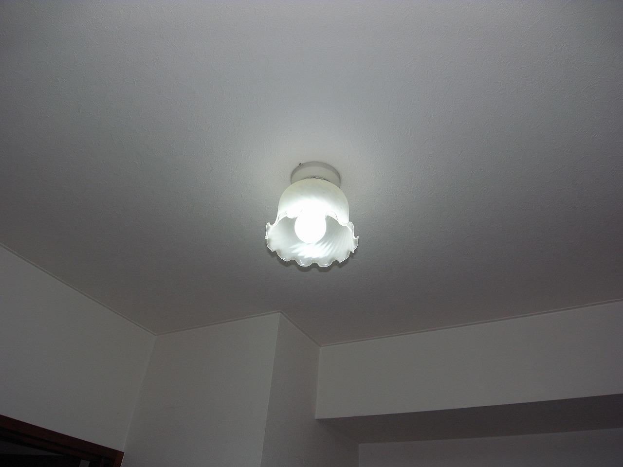 既存蛍光灯型12W (2)